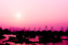Le bateau et le coucher du soleil de pêche dans la couleur rose modifient la tonalité Images stock