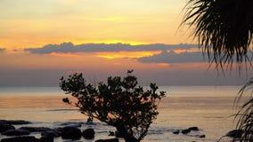 Le batelier nage à la côte de l'île tropicale au coucher du soleil L'homme dans le chapeau vietnamien flotte la position sur clips vidéos
