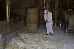 Le battage avec un fléau en bois par un homme a habillé le blanc photo stock