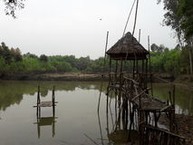 Le beau Bangladesh Photographie stock
