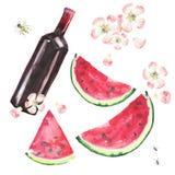 Le beau bel ensemble délicieux savoureux délicieux mignon merveilleux lumineux de pique-nique d'été inclut la bouteille de vin ro illustration de vecteur