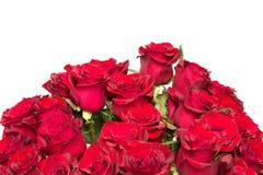 Le beau bouquet de roses rouges Images libres de droits