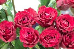 Le beau bouquet de roses rouges Images stock