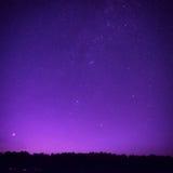 Le beau ciel nocturne pourpre avec beaucoup se tient le premier rôle photographie stock libre de droits