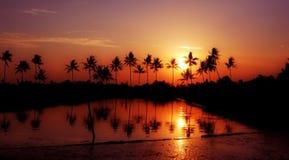 Le beau coucher du soleil jaune Image libre de droits
