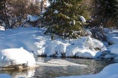 Le beau courant de montagne en hiver incluent la neige images stock