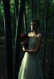 Le beau femme dans la forêt en bambou, croisent traité Photo stock