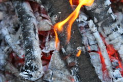 Le beau feu Images stock