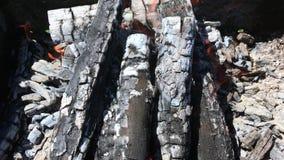 Le beau feu rouge du bois de tranche, charbons noirs gris-foncé à l'intérieur de brasero en métal banque de vidéos