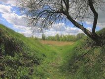 Le beau fond naturel est dehors avec deux collines couvertes Images stock