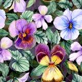 Le beau grand alto vif fleurit avec les feuilles vertes sur le fond foncé Modèle floral sans couture de ressort ou d'été illustration stock