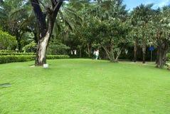 Le beau jardin Photographie stock libre de droits