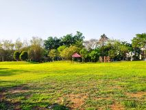 Le beau jardin et au-dessus de la pleine herbe verte et du fond arrière et ausome de ciel bleu vus était magique photo stock