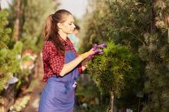 Le beau jardinier de fille habillé dans le tablier prend soin des usines dans le beau crèche-jardin un jour ensoleillé photographie stock
