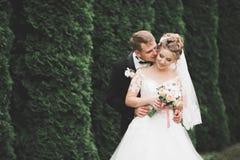 Le beau jeune couple de mariage est embrassant et souriant en parc Image stock