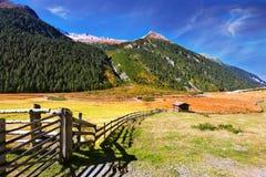 Le beau jour d'automne Photo stock