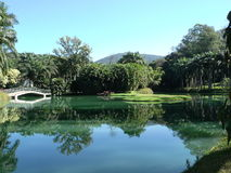 Le beau lac Photographie stock libre de droits