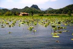 Le beau lakeview dans le comté de puzhehei, Yunnan, porcelaine Photos stock