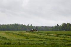 Le beau lansdscape avec la fenaison fauche l'herbe Images libres de droits