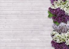 Le beau lilas sur un fond en bois Photo libre de droits