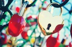 Le beau mariage ferme à clef sur l'arbre de fer de l'amour Photos libres de droits