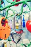 Le beau mariage ferme à clef sur l'arbre de fer de l'amour Photo libre de droits