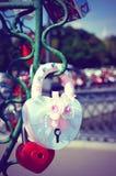 Le beau mariage ferme à clef sur l'arbre de fer de l'amour Photo stock