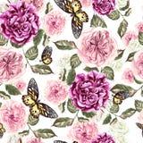 Le beau modèle d'aquarelle avec des fleurs a monté et papillon Image libre de droits
