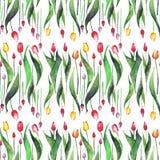 Le beau modèle sans couture vertical lumineux de la lavande pourpre rose jaune rouge de tulipes fleurit le croquis de main d'aqua Images libres de droits