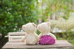 Le beau nounours concernent le concept de boîte en bois et en bois de l'amour et du te Image libre de droits