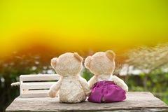 Le beau nounours concernent le concept de boîte en bois et en bois de l'amour et du te Photo libre de droits