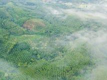 Le beau paysage avec le brouillard au nui de khai de khao Photographie stock libre de droits