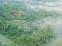 Le beau paysage avec le brouillard au nui de khai de khao Image libre de droits