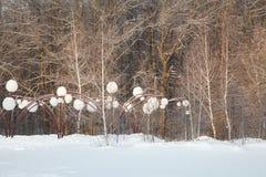 Le beau paysage de forêt d'hiver, arbres a couvert la neige Photo libre de droits