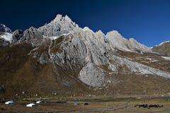 Paysage des montagnes photographie stock libre de droits