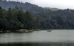Le beau paysage du lac énorme, avec des arbres, et la brume créent l'atmosphère apaisante photo libre de droits