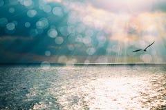 Le beau paysage marin avec la réflexion brillante sur l'eau bleue et le soleil d'océan rayonne photo stock