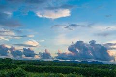 Le beau paysage naturel des Îles Maurice, après-midi images libres de droits