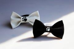 le beau petit papillon deux noir et blanc fait de tissu sur les cheveux se réunit pour créer une coiffure sur la tête, avec des e images libres de droits