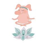 Le beau porc heureux se repose aveuglément dans une pose de lotus Images libres de droits