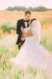 Le beau portrait arrière des nouveaux mariés étreignant dans le domaine de blé Photos libres de droits