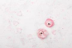 Le beau ranunculus rose fleurit sur la vue aérienne de table blanche Frontière florale dans la couleur en pastel Maquette de mari photos stock