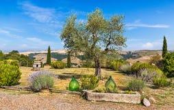 Le beau Toscan typique l'Italie images libres de droits