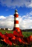 le beau vol d'automne laisse le phare photo libre de droits