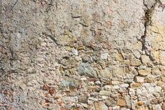 Le beige monopolisent la parole la texture Photo libre de droits