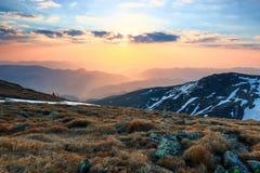 Le bel éclat rose de coucher du soleil éclaire les paysages pittoresques avec les arbres justes images stock