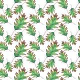 Le bel érable de vert d'automne part de l'aquarelle de modèle Images stock