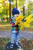Le bel enfant en bas âge avec l'érable part dans le parc d'automne Photo libre de droits