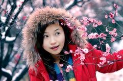 le bel hiver Photographie stock libre de droits