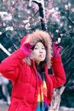 Le bel hiver Photo libre de droits